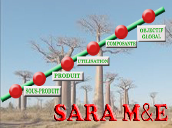 SARA Management et Evaluation